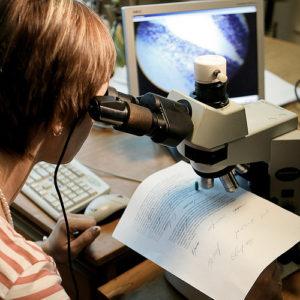 Методики проведения почерковедческой экспертизы подписи